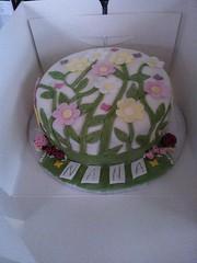 nanas cake (Laura_riggy) Tags: flowers smile portraits butterfly penguin football princess sister brother burger daughter barbie son grandad facepaint bathtime valentinesday 50shadesofgrey