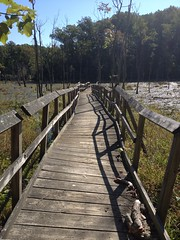 Calvert Cliffs (Esma Studios) Tags: old bridge wooden path rickety