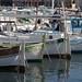 Vieux-Port de Marseille_7