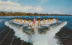 Cypress Gardens, Florida (The Pie Shops Collection) Tags: water vintage skiing florida postcard cypressgardens estherwilliams aquamaids