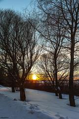 Winter sunset (penttja) Tags: winter sunset lake snow ice canon suomi finland landscape frost north deep tampere auringonlasku penttja