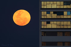Lua, Jpiter e Prdio (Moon, Jupiter and Building) (Fabiano Diniz) Tags: earthandspace astro:subject=moon astro:gmt=20121128t2213