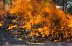 big roast (Isaiah62:1) Tags: ilce6000 sonya6000 a6000 dogroast cookout fire logfire hotdogroast texture usa sigmadnlens