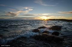 Last light (- Man from the North -) Tags: sea explore westcoast finland sunset water sun waves trees samyang14mmf28 samyang nikon nikond7000 rocks summer clouds wideangle