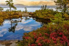 Clouds in the Water (Peter Vestin) Tags: nikondf sigma35mmf14dghsmart siruin3204x siruik30x adobecreativecloudphotography topazlabscompletecollection rggrdsviken hammar vrmland sweden vnern nature landscape seascape sunset