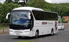 Gibson Direct Neoplan Tourliner PN13TGK (andyflyer) Tags: gibsondirect gibsonsdirect gibsons gibsonsexecutive sunsundegui gibsonexecutive neoplantourliner neoplan pn13tgk coach bus a90 a90dundee