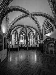 Sala-palacio-espiscopal-Astorga_DSC5476+ML (kanzer16) Tags: sony voigtlander ilce7r superwideheliar15mmf45iii sonya7r architecture blackandwhite blancoynegro monochrome palacio episcopal astorga espaa