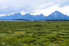 Grand View (Marisa Sanders Photography) Tags: tetons grandtetons thegrandtetons nps np gtnp grandtetonnationalpark canon canon7d explore outdoors outside gtfoutside gtfoutdoors landscape photography lake