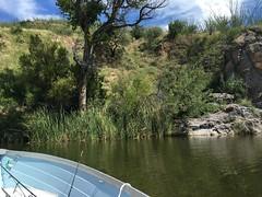 IMG_5208 (hector.acuna) Tags: fishing boating camping lake az arizona southernarizona bajaarizona hectorjacuna