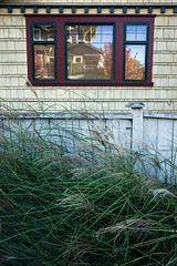 Phinney (pantagrapher) Tags: seattle phinney ridge window house craftsman architecture fence grass ricoh grii