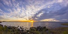 Ferodale Gold. (williams.darrell53) Tags: landscape sunset water dam lake reflection cloud canon samyang australia darrell williams