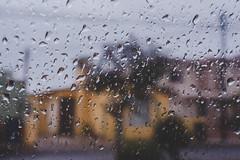 Ah viene el huracn (20/365) (pedrobueno_cruz) Tags: window water clouds cloudy rain drops house raining photography photographer hurricane street 365 challenge california mxico ensenada d7200 35mm bokeh cold