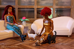 your cats are so cute, sidney ! (photos4dreams) Tags: russianbluecatp4d schleich cat ooak toy plastic spielzeug plastik photos4dreams p4d photos4dreamz photo katze russischblau russianblue repaint custom omg  2016 dress barbie mattel doll barbies girl play fashion fashionistas outfit kleider mode puppenstube tabletopphotography aa sidney regularlifeinthedollhouse puppe bobbyjean