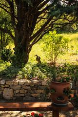 2016_AveyronMaison-9 (LeCanardMasqu) Tags: 2016 aveyron naturemorte objet vacances