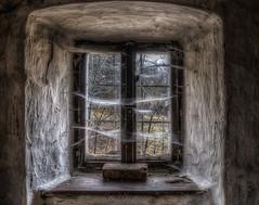 spider's web (WolfiNim) Tags: old urban abandoned dark nikon decay forgotten unknown exploration hdr ue urbex wolfinim