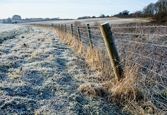 Frosty fence (TDR Photographic) Tags: uk morning winter light england cold canon fence landscape frost dorset possibles eos5d