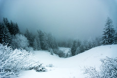(galin ganchev*) Tags: winter mountain snow sofia bulgaria vitosha