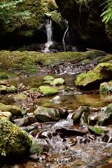 (Giopuppy) Tags: winter nature water japan waterfall nikon january natura  shimane acqua inverno   giappone gennaio  hirata  cascata   2013    d3100 nikond3100 karakama