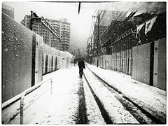 Snow Day (MT...) Tags: street blackandwhite bw snow monochrome japan tokyo     grd3