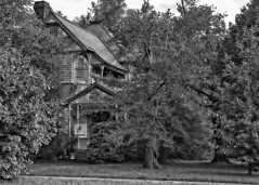"""Afraid my dear?"" (NC Cigany) Tags: street trees bw house abandoned blackwhite nc haunted oxford mansion decrepit topaz 7824 oncewashome"
