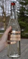 Glasklart (delfinbea) Tags: genomskinlig fotosondag fs130203