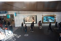 20130203-DSC08356.jpg (toshworld) Tags: japan tokyo voigtlander 15 45 f45 15mm  swh vm nex superwideheliar 1545 nex5n