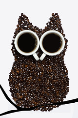 "Hoo (le cabri) Tags: stilllife kitchen coffee beans eyes nikon branch cups owl hoo strobe d600 ""cactus life"" strobist ""still cactustrigger cabriphoto cactusv5 v5"""