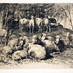 "<b>Troupeau de Moutons</b><br/> Albert Heinrich Brendel (Etching) (1888)<a href=""http://farm9.static.flickr.com/8238/8450249265_5723a62214_o.jpg"" title=""High res"">∝</a>"