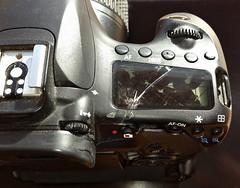 Bad Day (Matt Molloy) Tags: camera broken photography crack smashed badday badluck knockedover mattmolloy canon60d iamthedestroyerofcameras windtheinvisiblekiller makesureyourtripodissecure