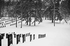 German Military Cemetery, Broadhurst Green, Cannock Chase 20/01/2013 (Gary S. Crutchley) Tags: world uk travel winter 2 two england bw white snow black green heritage history monochrome cemetery one 1 woods nikon war forrest britain military united wwi wwii great first kingdom graves cannock german chase ww2 second and local ww1 nikkor vr afs ifed 24120mm f3556 broadhurst kartpostal d700