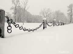 Hold On Fence Friday (RootsRunDeep (traveling)) Tags: trees winter snow cold metal fence landscape scene chain wyoming friday irin