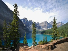 moraine lake (explored) (Rex Montalban) Tags: trees mountain lake banffnationalpark morainelake canadianrockies glaciallake rexmontalbanphotography notanhdrimagebuteditedinpost