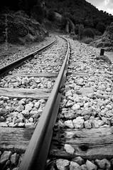 Sa sa prova due tre prova... (cocciula) Tags: sardegna bw sardinia curve stazione treno percorsi carpediem ferrovia binari treni rotaie ogliastra salire gairo chicècè frazioni deviazioni prontezza saliamo gairotaquisara trenichepassano