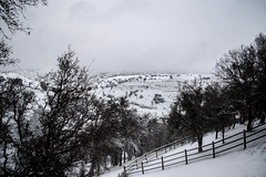 Snow Day (Lady Pandacat) Tags: california winter pentax snowday pandacat 2013 tinaangel
