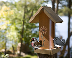 Birdorable loves feeder birds! (birdorable) Tags: