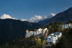 McLeod Ganj (Dharamsala / ) 2'082m (<<<...Buddhamountain...) Tags: india hh himalaya freetibet dharamsala mcleodganj himachalpradesh littletibet buddhamountain