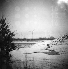 16 16 16    12 12 12    13 13 13 (Der Ohlsen) Tags: schnee winter bw snow 120 6x6 film analog mediumformat germany square deutschland dianaf tori schleswigholstein lomographyladygrey400