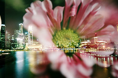 Singapore Night in Flower (Khnh Hmoong) Tags: longexposure flowers film night analog 35mm iso200 singapore doubleexposure analogue nhatrang nikonfm filmswap kodakcolorplus200