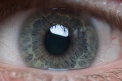 I have green eyes (mrgavinconway) Tags: macro eye me arty raynoxdcr250 canonefs55250