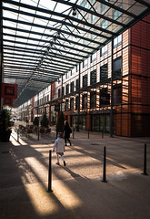 Cit Internationale (Chimay Bleue) Tags: france building glass architecture modern buildings french design hall shadows postmodern lyon interior piano modernism courtyard center ceiling architect convention dor parc renzo tete linear