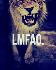 LMFAO. (SierraLani) Tags: laughing lion rawr growl lmfao teethe