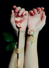 life support (Bethany LeAnne) Tags: rose blood hands veins lifesupport rosiehardy lissyelle bethanyleanne
