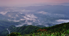 Clouds and mists in the mountains (Singer ) Tags: road sky mist tree fog clouds sunrise canon taiwan singer  taipei     seaofclouds              singer186