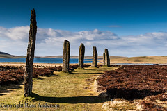 Ring of Brodgar henge