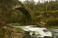 2013_031 (kgorka) Tags: rio canon river puente sigma kata manfrotto galdames eos7d gorkabarreras