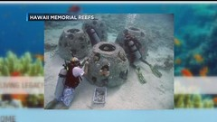 Proposal uses ashes of loved ones to create an artificial reef in Maunalua Bay A unique proposal for an artificial reef off Oahus west and southeast shores using the cremated remains of loved ones has created backlash from some community members. @DBL07C (jimmy.007bond) Tags: website design hawaii columbia