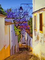 Evora Street 2 (Artypixall) Tags: portugal evora street buildings homes windows facades streetlamp jacarandatree urban faa getty