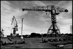 Nantes - le Sainte-Anne (aRGeNTiC yeaRS) Tags: didierhubert didierhubertphotographe photographie europe france loireatlantique nantes lesainteanne grues cranes port harbor