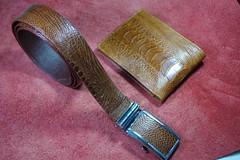 IMGP6396 (lelamminh) Tags: crocodile alligator watchstrap watchband wallet menbelt