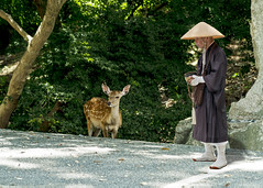 shinto japan (DROSAN DEM) Tags: japan japon asia shinto sintoismo gente people cara face rostro religion golden